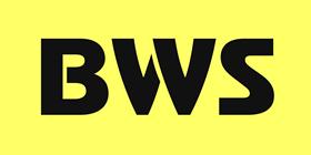 BeeWebStudio Landing - логотип